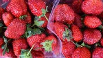 Business marketing online and strawberries